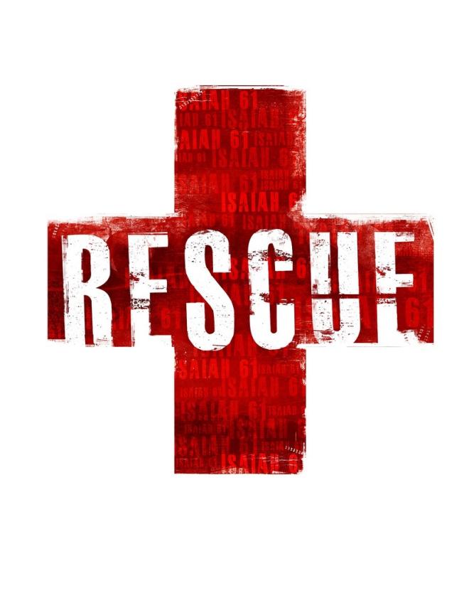 rescue-series_november2015