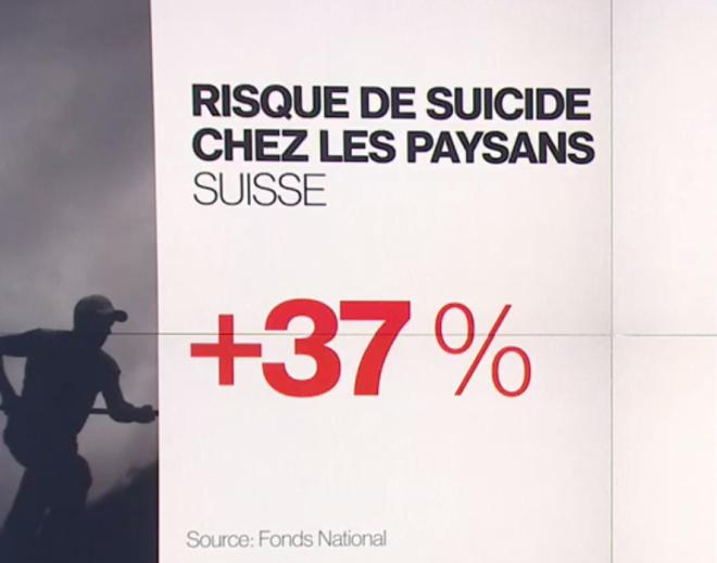 paysans suicide suisse