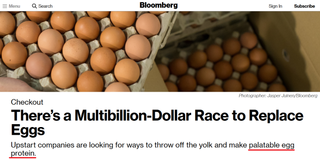 Bloomberg - palatable egg protein