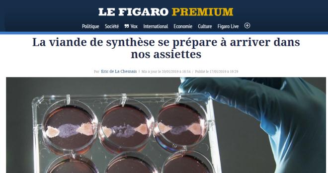 Figaro - viande artificielle